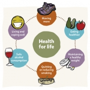My Health For Life // ATSI Resource - Diagram